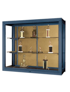 Premiere Wall Mounted Display Cases